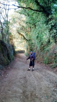 On the Camino walk